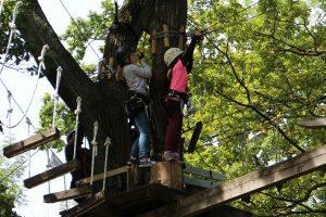 Idée sortie de classe dans la forêt
